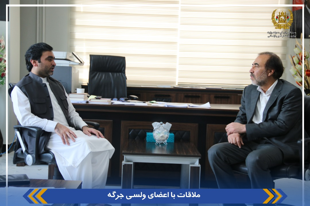 SMPA DM of Parliamentary Affairs meets MPs of LH of Parliament